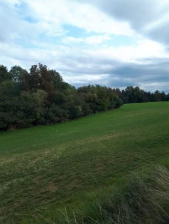 Fergitz, Grünland